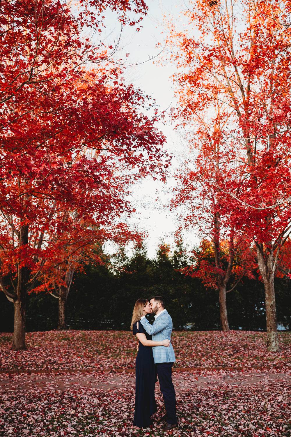 Daniel Stowe Botanical Gardens engagement, Daniel Stowe Botanical Gardens wedding, Daniel Stowe Botanical gardens, North Carolina Engagement Photographer, Charlotte NC Engagement, North Carolina engagement Picture ideas, Charlotte NC wedding Photographer, engagement locations in Charlotte NC, engagement inspiration, Best places for an engagement session in Charlotte NC, North Carolina Engagement Photos, Asheville NC Engagement Photos, fall engagement photos, winter engagement photos